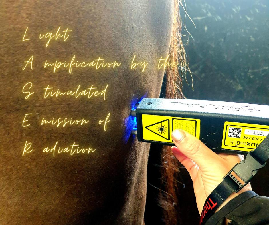 Hevosen laserhoito